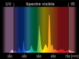 LED, garde-à-vous ! Spectre-fluocompacte
